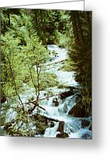 water fall Lolo pass 2 Greeting Card