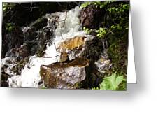 Water Fall Greeting Card by Yvette Pichette