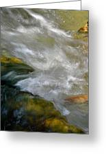 Water - Flow Of Life 1 Greeting Card