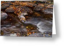 Water Flow Through The Boulders. Eureka. Mauritius Greeting Card