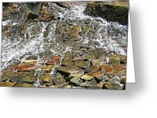 Water From A Stone Greeting Card