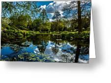 Water Garden Greeting Card