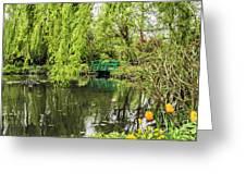 Water Garden Wonder Greeting Card