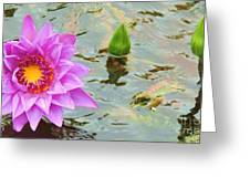 Water Lilies 001 Greeting Card