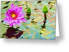 Water Lilies 002 Greeting Card