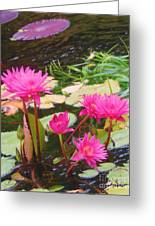 Water Lilies 009 Greeting Card