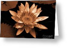 Water Lilies 012 Greeting Card