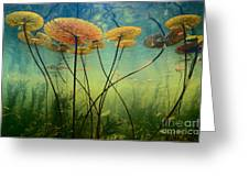 Water Lilies Photograph by Frans Lanting MINT Images