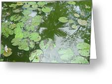 Water Lily Leaves And Palm Trees Greeting Card