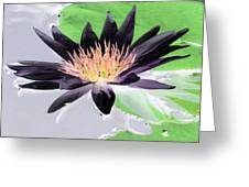 Water Lily - Purple Power - Photopower 1377 Greeting Card