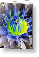 Water Lily - The Awakening - Photopower 03 Greeting Card