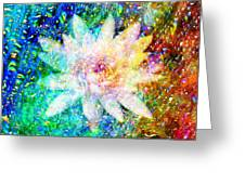 Water Lily With Iridescent Water Drops Greeting Card
