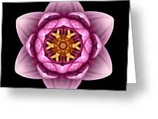 Water Lily X Flower Mandala Greeting Card