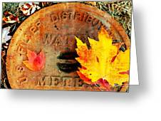Water Meter Cover With Autumn Leaves Abstract Greeting Card