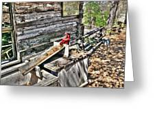 Water Pump In Nature Greeting Card