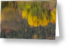 Water Reflections Abstract Autumn 2 B Greeting Card