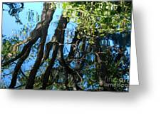 Water Reflections 3 Greeting Card