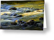 Beautiful Water Reflections On The Flowing Thornapple River Greeting Card