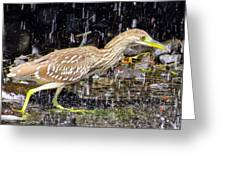 Water Runner Greeting Card