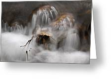 Water Study 015 Greeting Card
