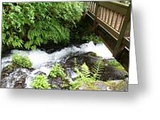 Water Under The Bridge I Greeting Card