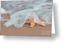 Water Veil Greeting Card