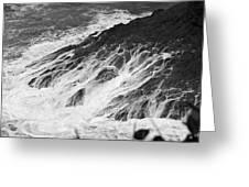 Water Web Greeting Card
