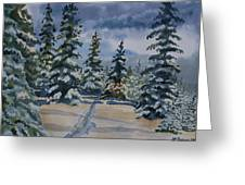 Original Watercolor - Colorado Winter Pines Greeting Card