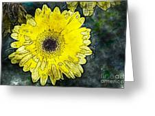 Watercolor Daisy Greeting Card