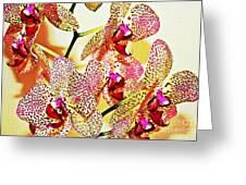 Watercolor Orchid Shadows Greeting Card