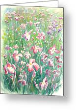Watercolour Of Pink Iris's In A Green Field Greeting Card