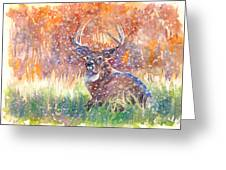 Watercolour Painting Of A Stag In The Snow Greeting Card