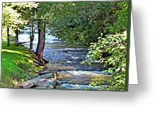Waterfall And Hammock In Summer Greeting Card