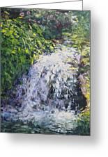 Waterfall At Chicago Botanic Gardens Greeting Card