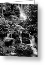 Waterfall At Rainbow Springs Greeting Card