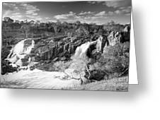 Waterfall Black And White Greeting Card