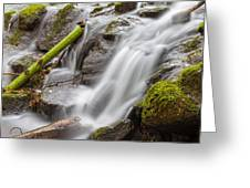 Waterfall Close Up In Marlay Park Greeting Card