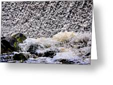 Waterfall Dance Greeting Card