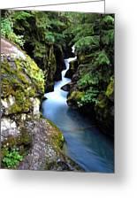 Waterfall, Glacier National Park Greeting Card