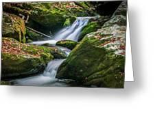 Waterfall Great Smoky Mountains  Greeting Card