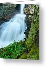 Waterfall - High Water On Falls Brook Greeting Card