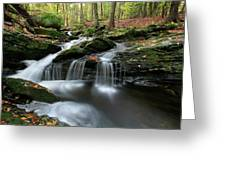 Waterfall In Autumn Woods Greeting Card