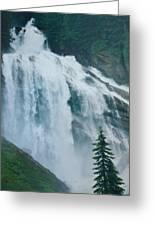 Waterfall In British Columbia Greeting Card