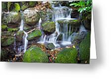 Waterfall In Marlay Park Greeting Card