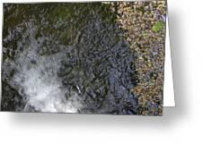 waterfall in park Angerenstein in Arnhem Greeting Card