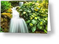 Waterfall In The Hosta Greeting Card