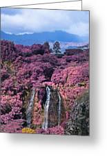 Waterfall Kauai Hawaii  Greeting Card
