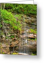 Waterfall On The Way To Thurmond Greeting Card