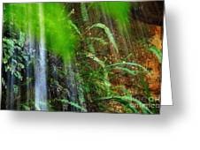 Waterfall Over Ferns Greeting Card