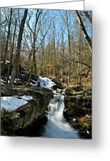 Waterfall Rush Greeting Card